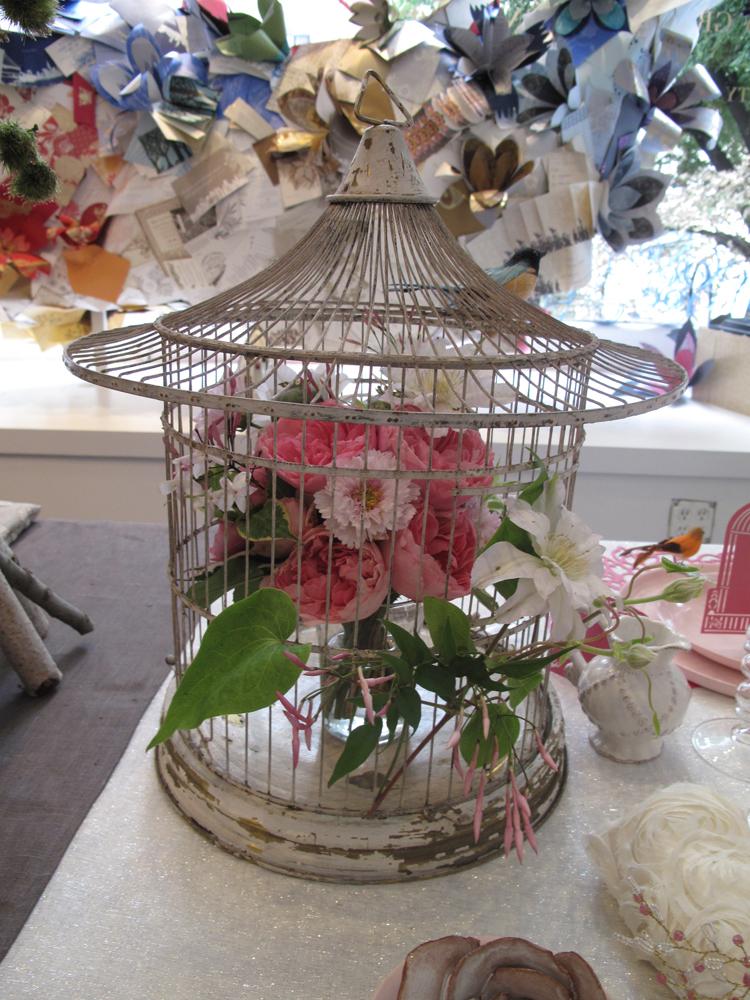 Robin_zachary_birdcage_closeup_lr